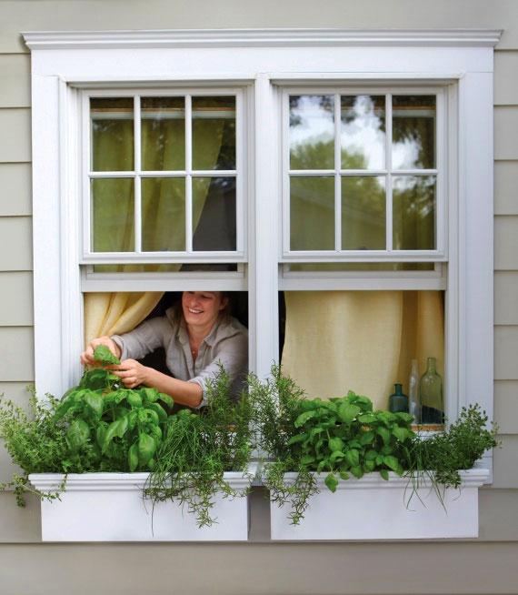 Okno z drobnym gzymsem jako wykończenie donic