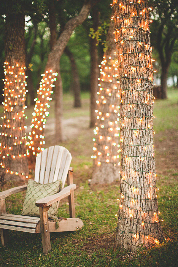 Oświetlenie wokół konarów drzew